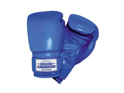 Перчатки боксерские детские для детей 7-10 лет (6 унций) ДМФ-МК-01.70.01-арт SG000001259 Romana