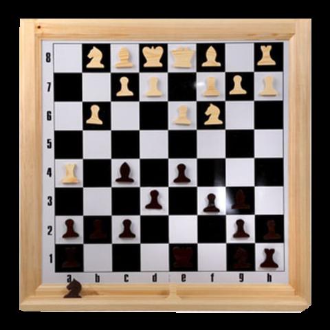 Шахматы настенные демонстрационные (Орлов) Н-2Н